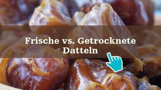 Dattelbaer-newsletter-banner-2